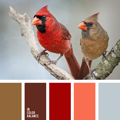 Paleta kolorów nr 3491