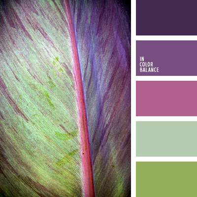 Paleta kolorów nr 3493