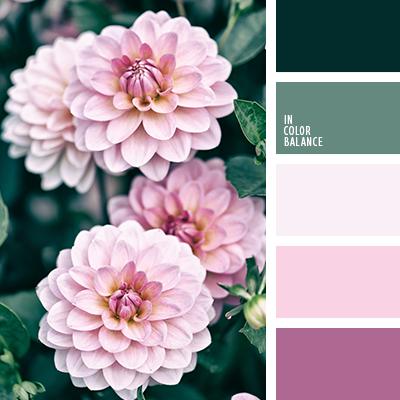 Paleta kolorów nr 3508