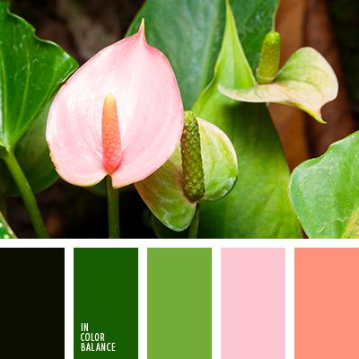 Paleta kolorów nr 3877