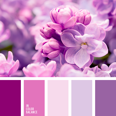 Paleta kolorów nr 3882