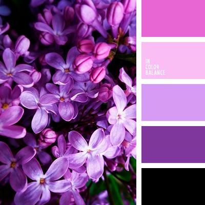 Paleta kolorów nr 3908