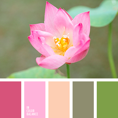 Paleta kolorów nr 3911
