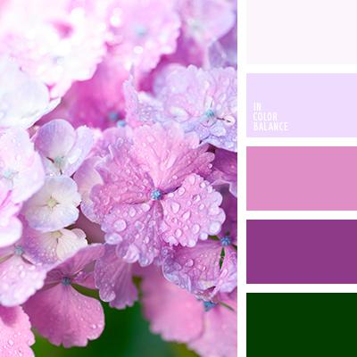 Paleta kolorów nr 3918