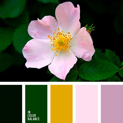 Paleta kolorów nr 3922