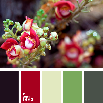 Paleta kolorów nr 3925