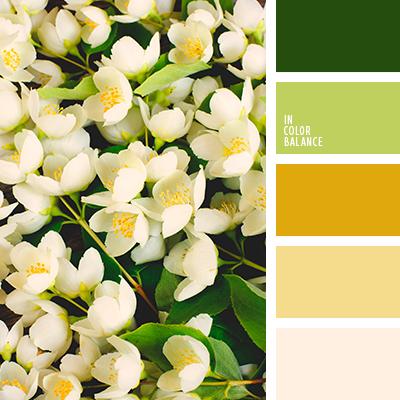 Paleta kolorów nr 4004
