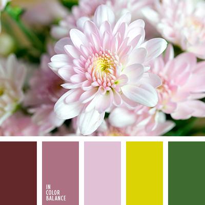 Paleta kolorów nr 4005