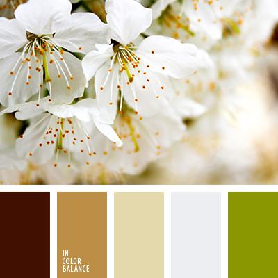 Paleta kolorów nr 4006