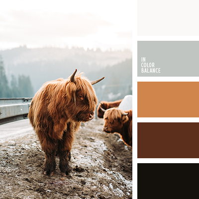 Paleta kolorów nr 4155