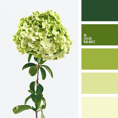 Paleta kolorów nr 4235