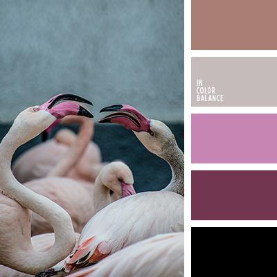 Paleta kolorów nr 4258