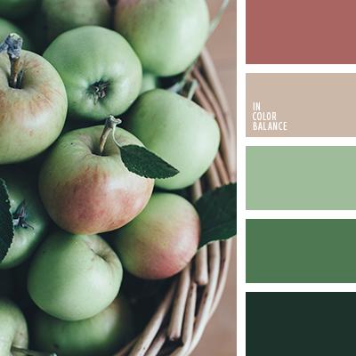 Paleta kolorów nr 4259