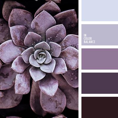 Paleta kolorów nr 4264
